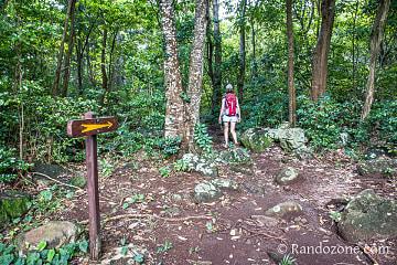 Début de la randonnée : le sentier est bien balisé