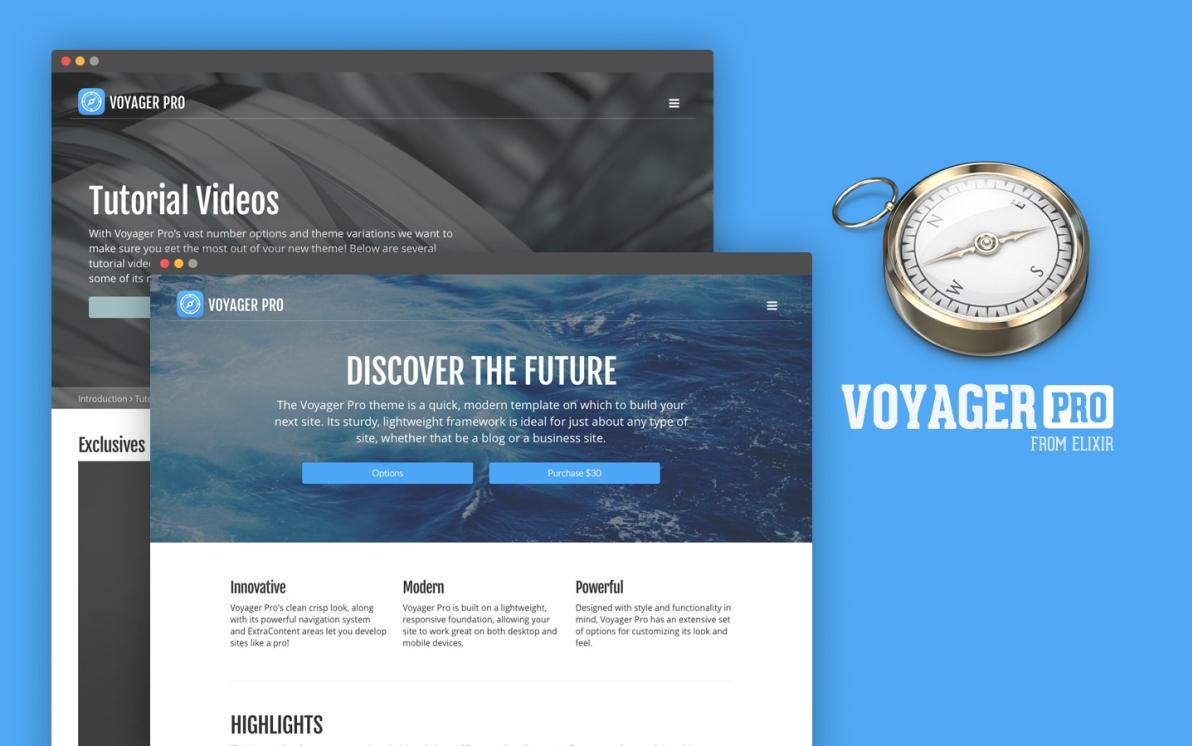 Voyager Pro screenshot