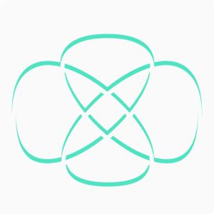 Torus Knot icon