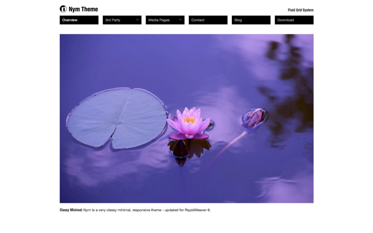 NYM Theme screenshot