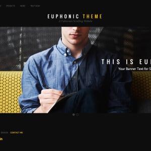 Euphonic icon
