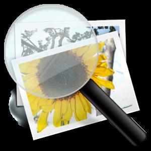 Magnify Image icon