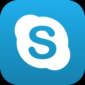 Skype Button 2 icon