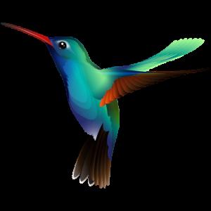 Image Hover icon