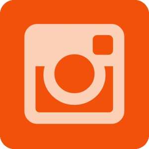 InstaViewer icon