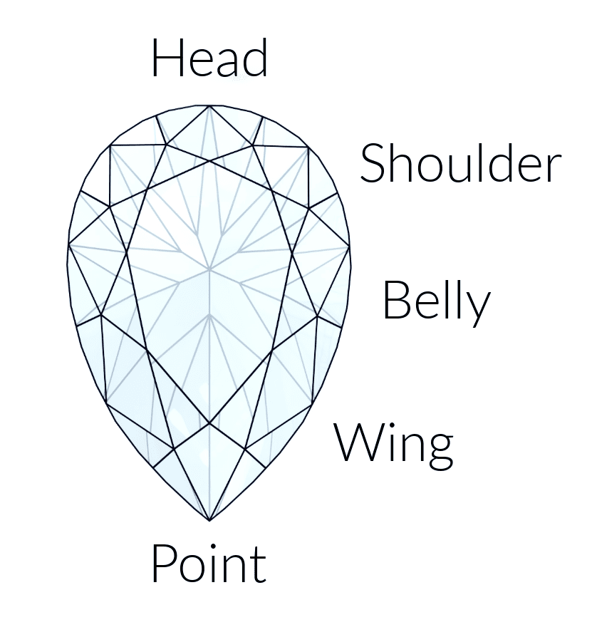 Anatomy of a pear shape.png