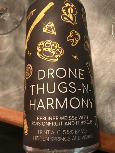 Hidden Springs Drone, Thugs + Harmony