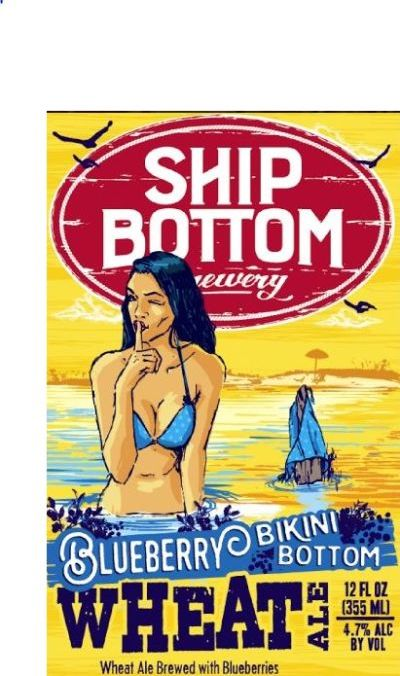 Image result for ship bottom bikini bottom blueberry