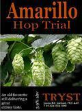 Tryst Amarillo Follow the Hop (cask)