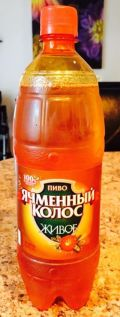 Yachmenniy Kolos Zhivoe