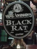 Rat Black Rat