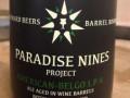 Paradox Beer Paradise Nines - American-Belgo IPA