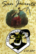 Bexar County San Jacinto