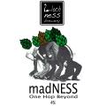 Loch Ness Mad Ness (One Hop Beyond)