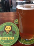 The Fiddler Fuzzy Bear