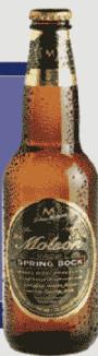 Molson Spring Bock