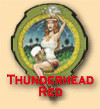 Fresh Beer Thunderhead Red