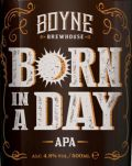 Boyne Brewhouse Born in a Day APA