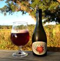 Jester King Sherry Barrel Atrial Rubicite