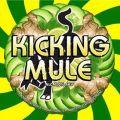 Toccalmatto Kicking Mule