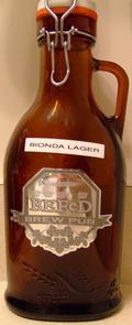 BEFeD Birra Bionda Lager