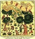 Dupont Forêt