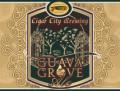 Cigar City Guava Grove Farmhouse Ale