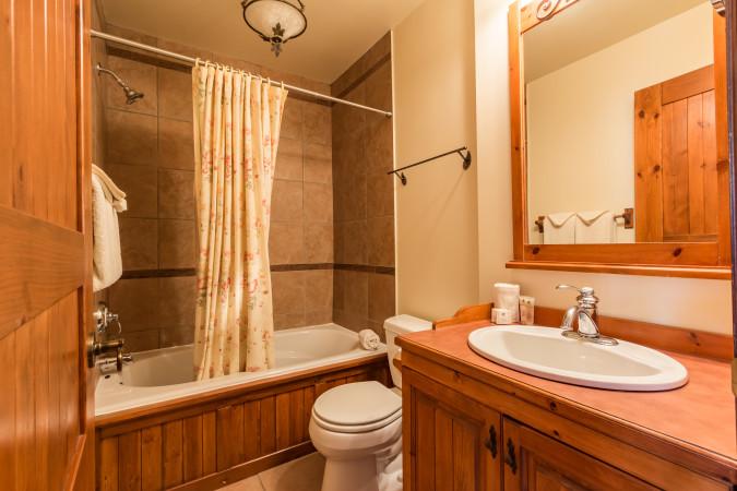 Le Plateau 208-5 - Bathroom Two