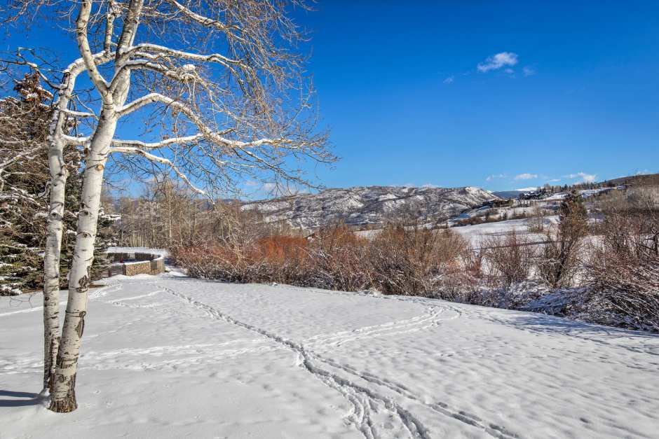 Snowmass Villa 21 - Photo - 18