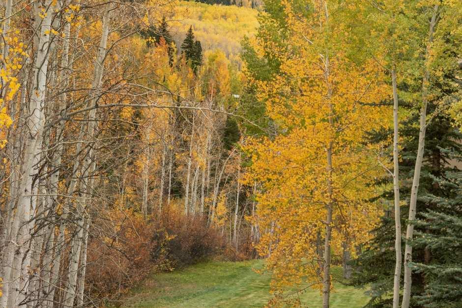 Two Creeks Home - Photo - 20