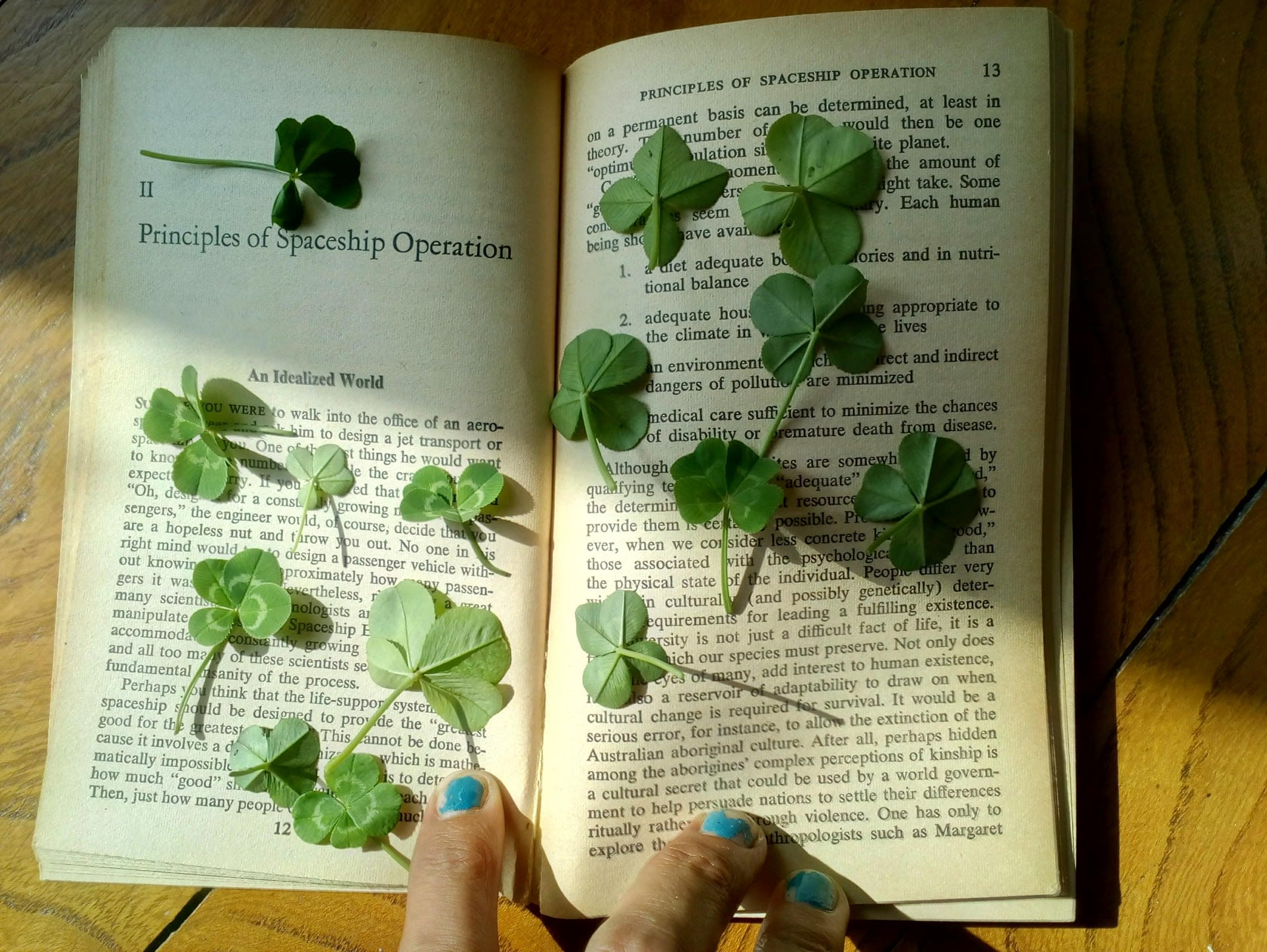 Go out into the garden in the rain, pick a few. Put them in a book to dry.