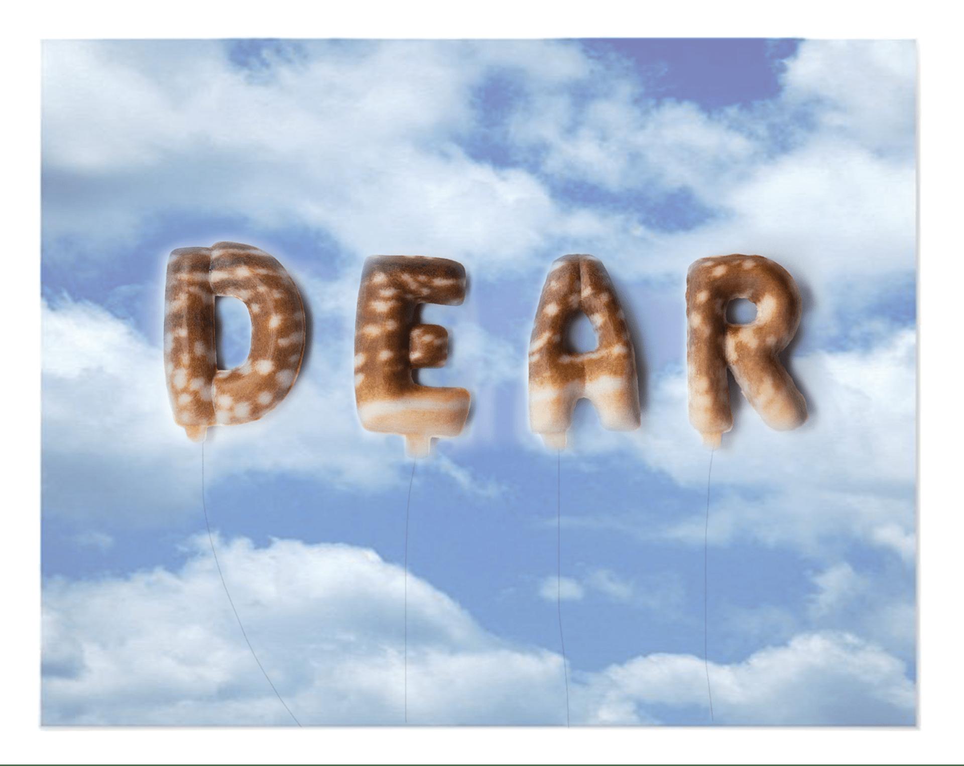 Dear Deer!