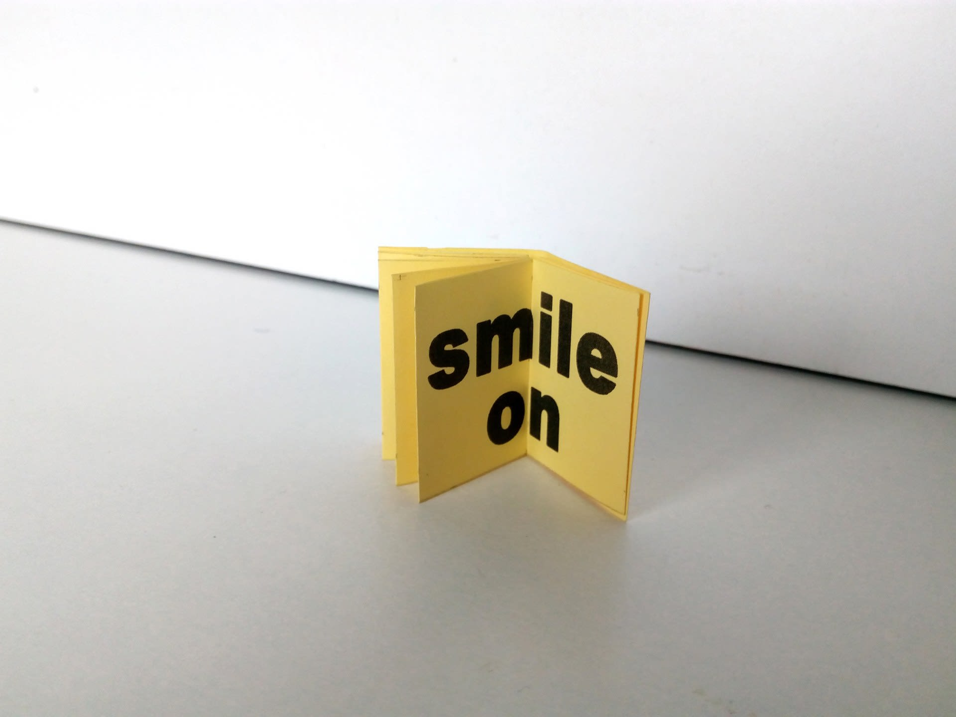 A Very Brief Guide to False Smiles (detail)