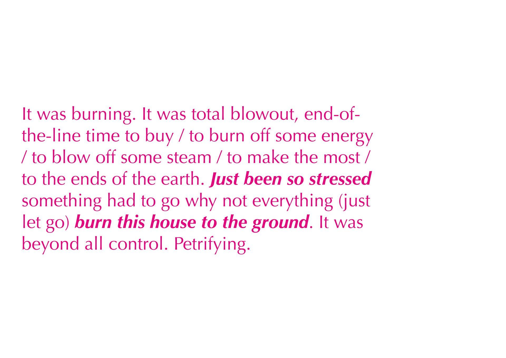 Excerpt 3
