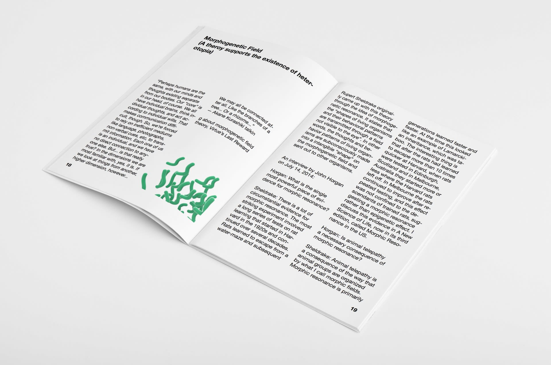 heterotopia research book6