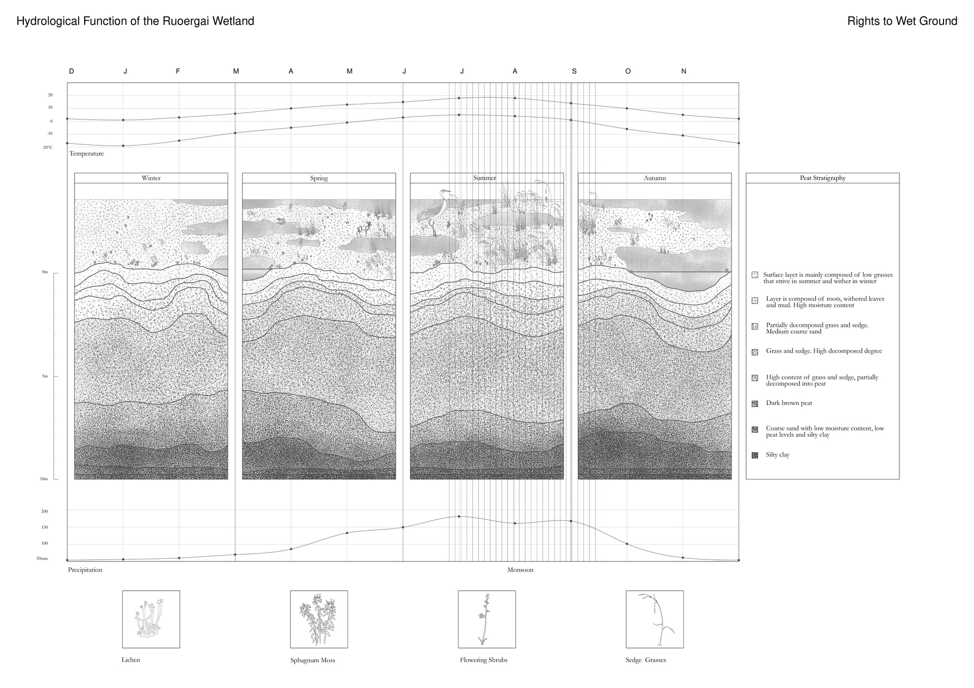 Hydrological Function of The Ruoergai Wetland