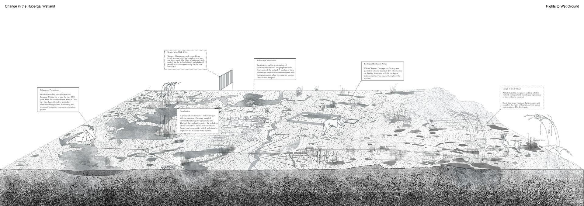 Change in the Ruoergai Wetland