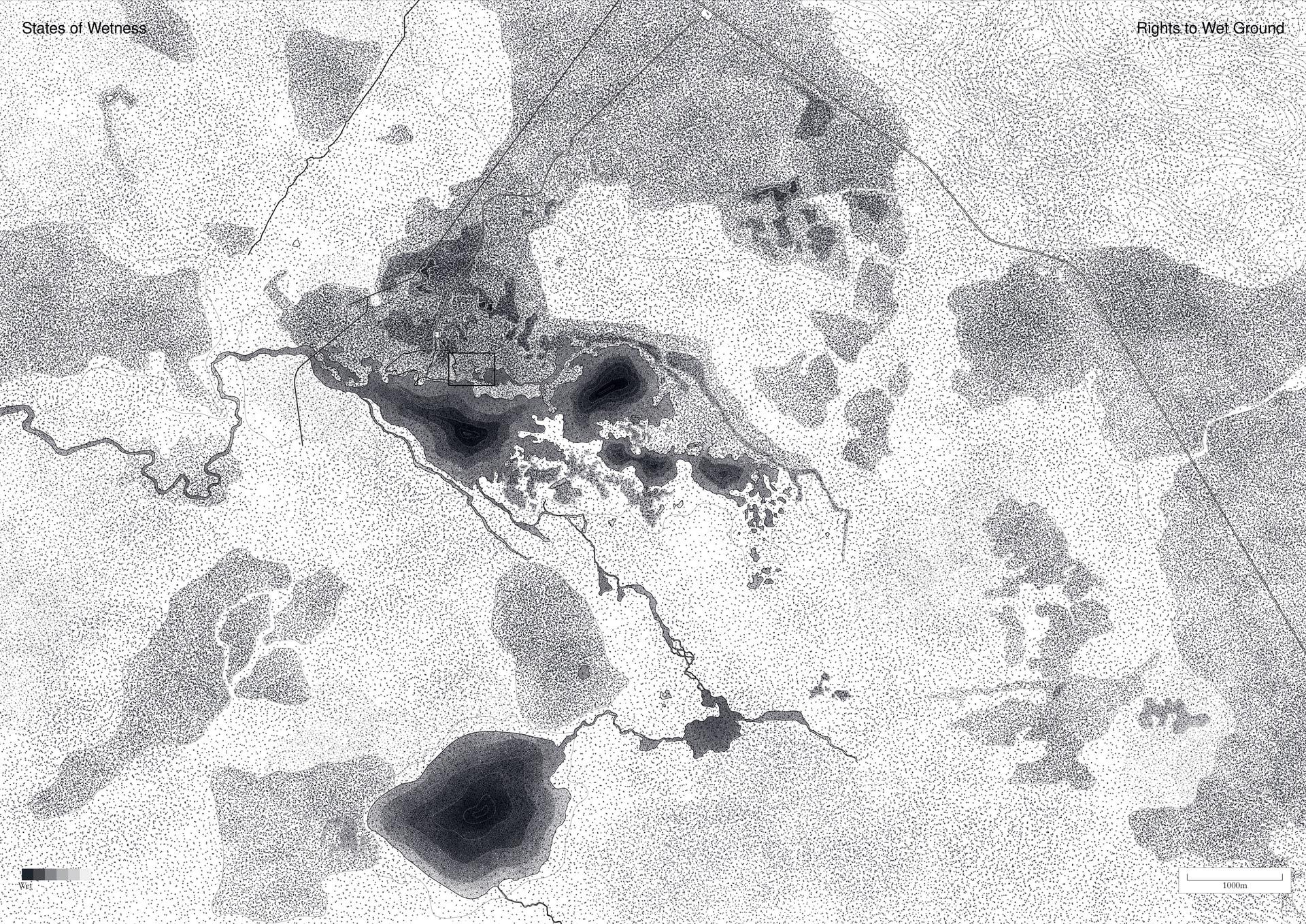 States of Wetness