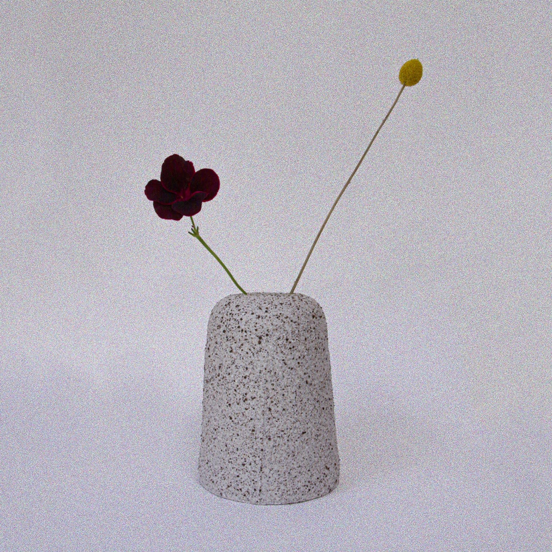 Kotto Vase #4