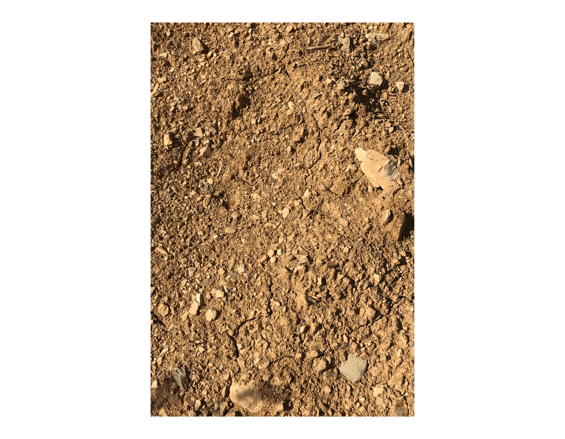 Color of the soil  —  Farmhouse