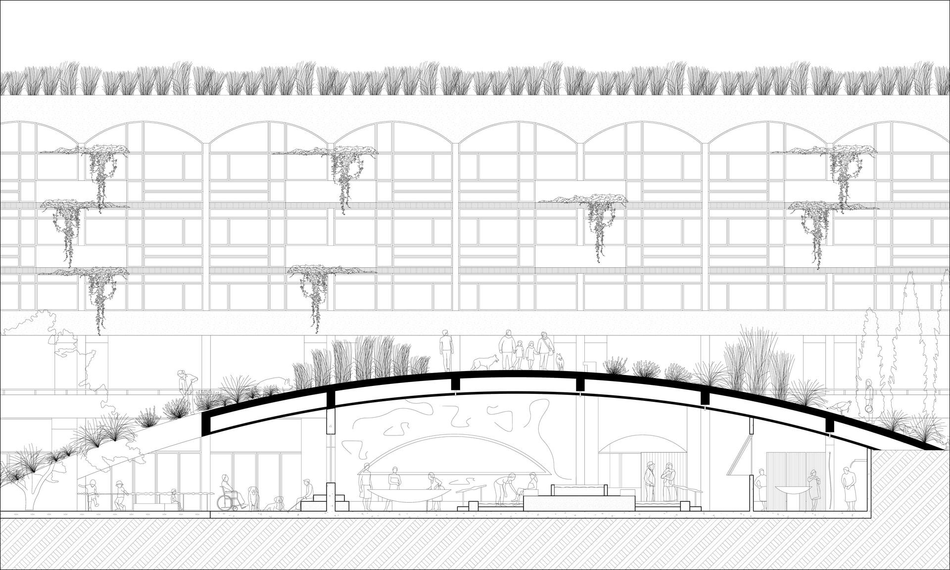 Baths: Hill Section - Digital drawing