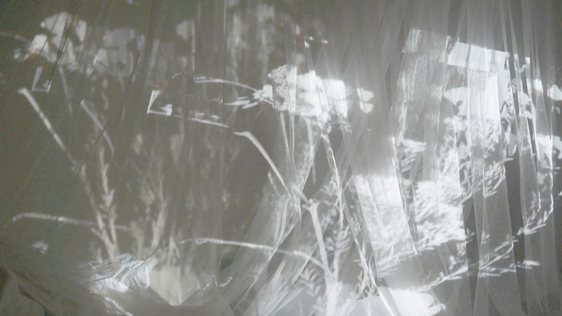 Lunhua Kong, 'Constant conjunction', video still, 2020