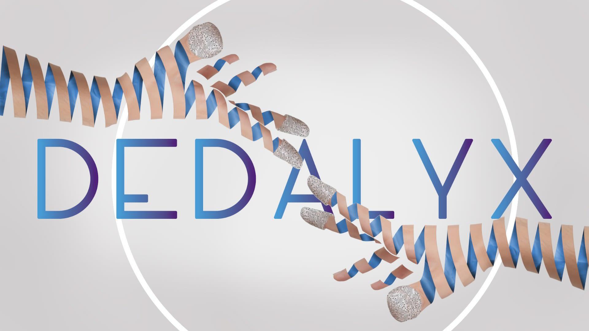 _Dedalyx presentation video