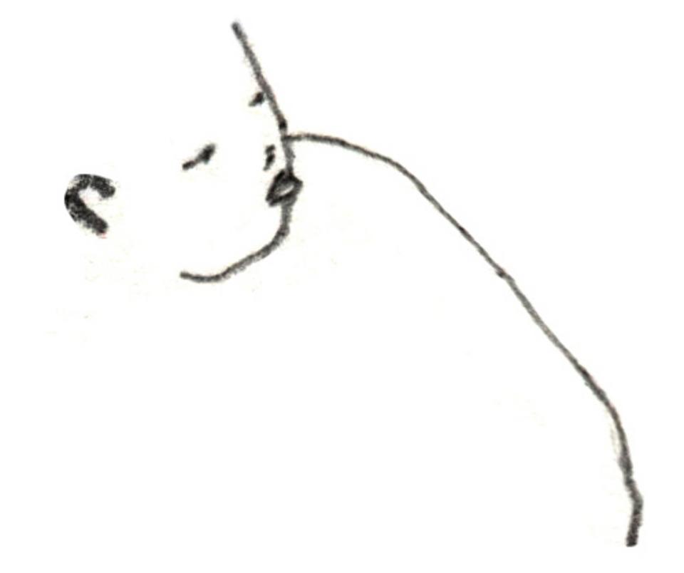 Chenyue Yuan