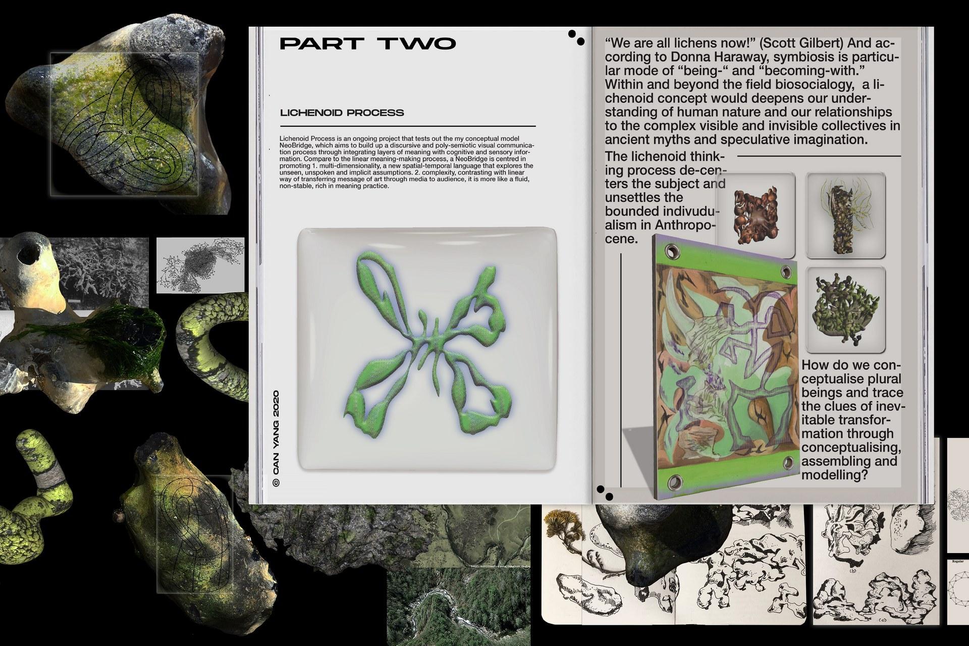 Lichenoid Process 01.jpg