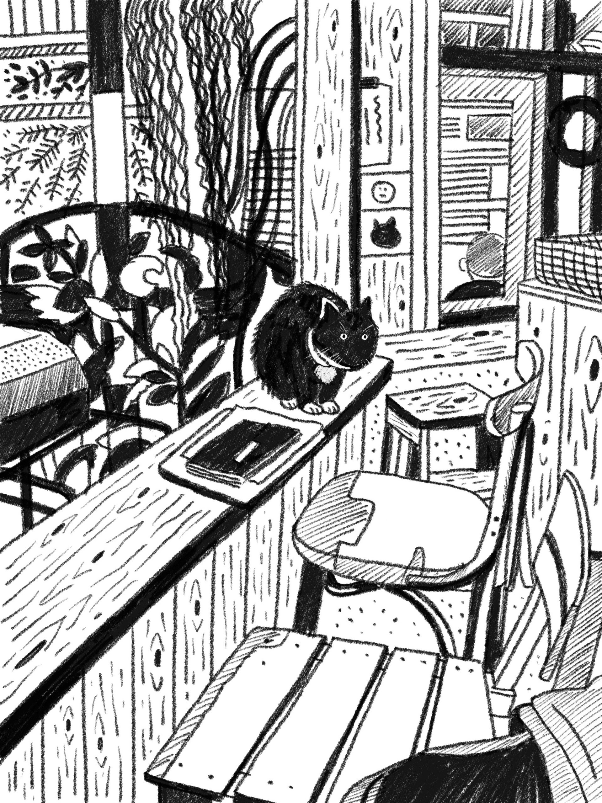 A black cat in the cafe