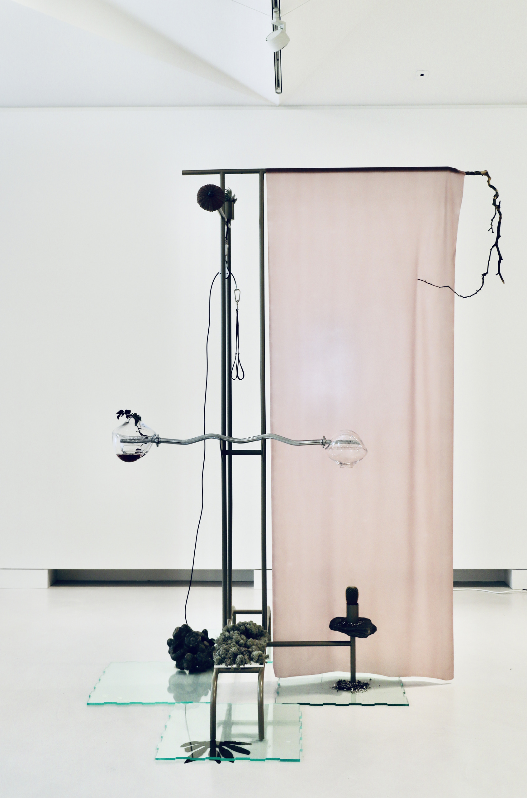 Exercise of Entangled Empathy, 2021  Glass, water, algae, plants, soil, fossil rock, bell bar, pulley system, latex, tree branch, powder coated stainless steel.  267x140x180cm