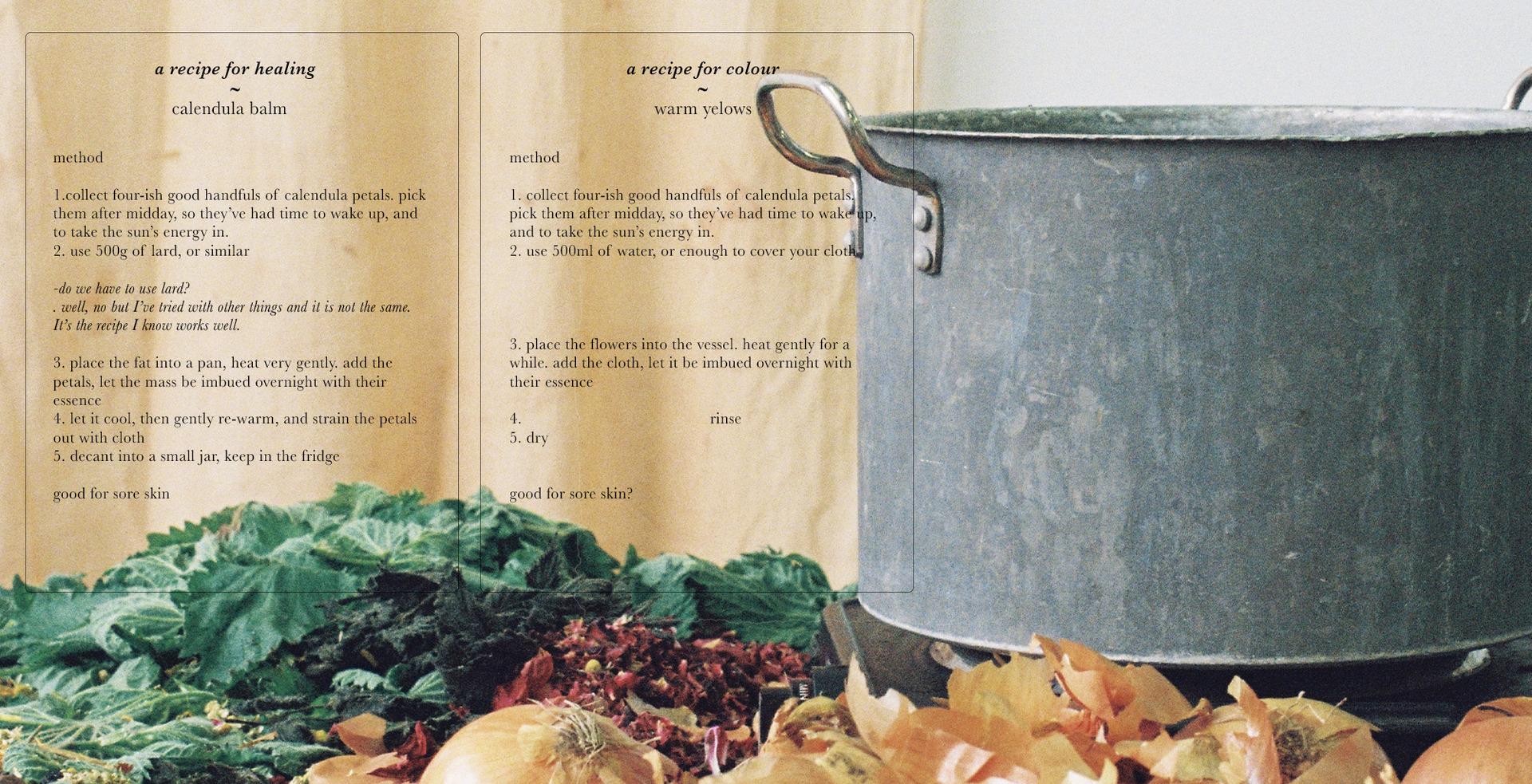 A recipe, shared
