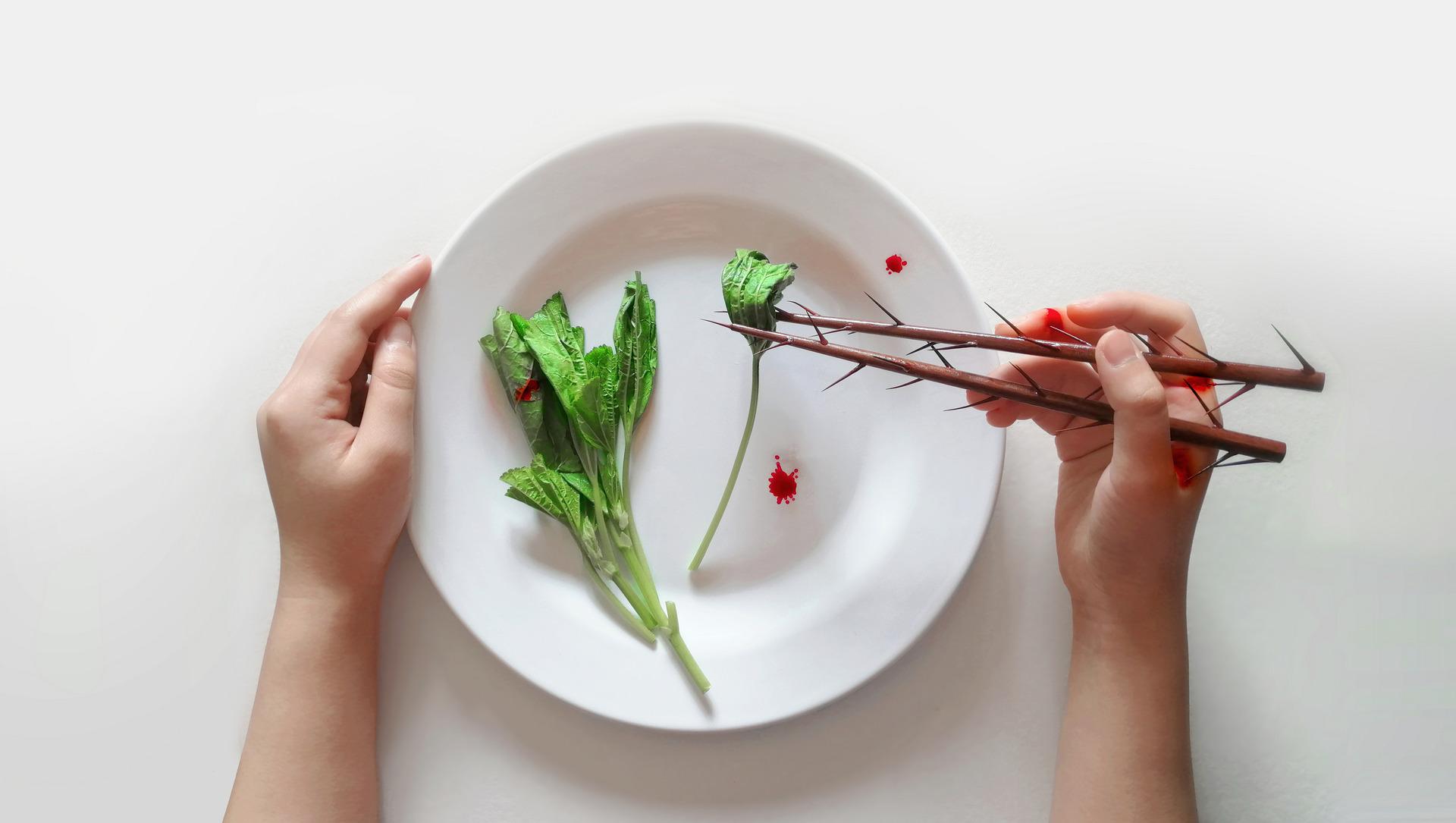 Diet trainer — Chopsticks