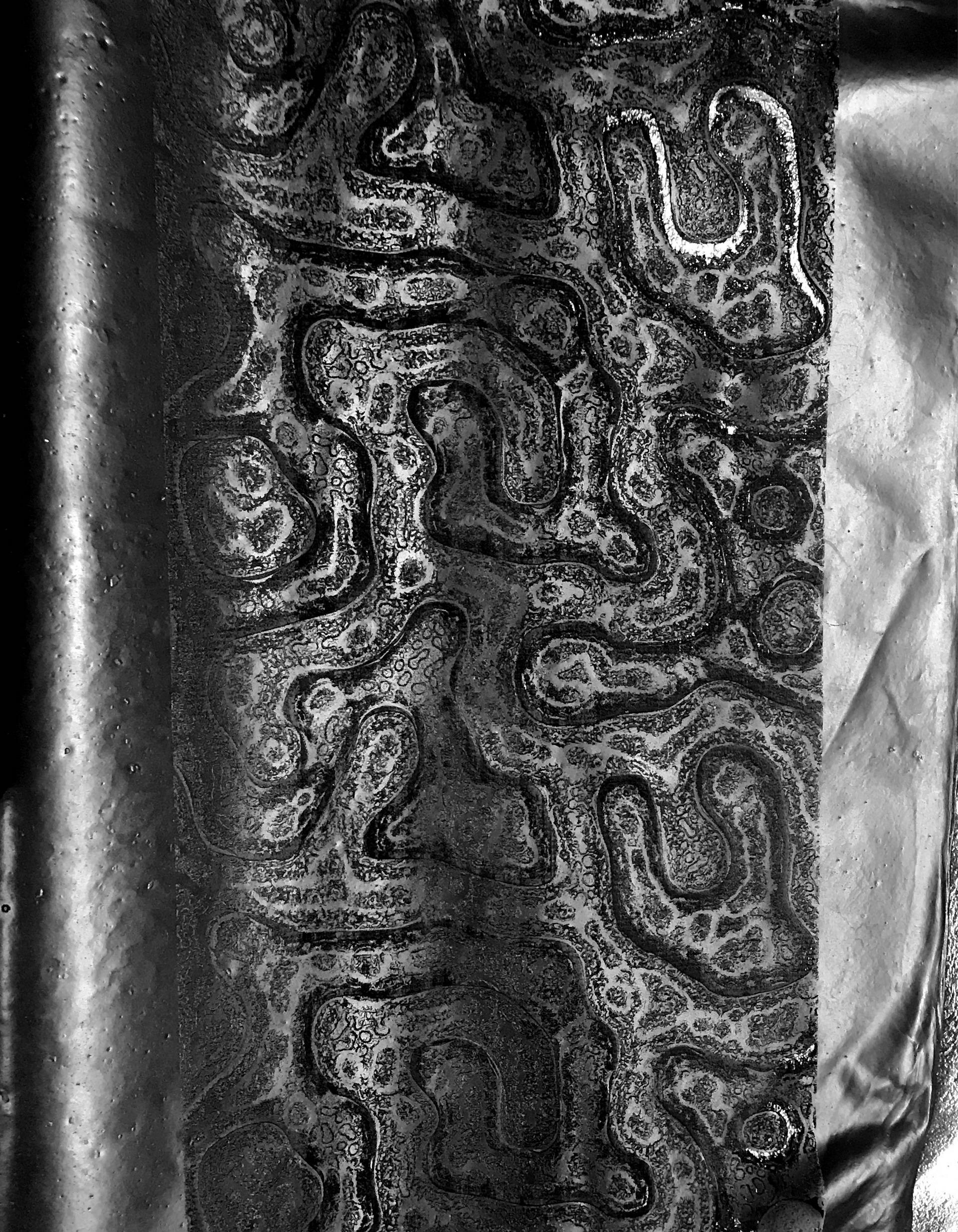 engraved algae leather